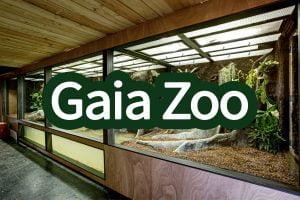 Gaiazoogallerij