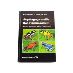 Oophaga-pumilio-Das-Kompendium