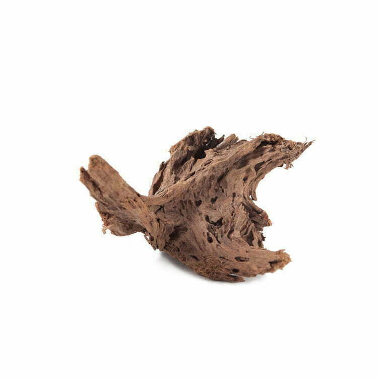 terrarium hout