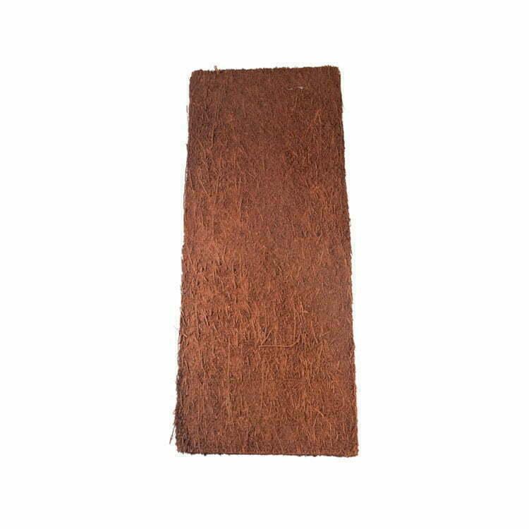 Tree Fern Panels & Backgrounds
