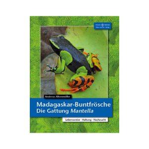 Madagaskar-Buntfroesche-Die-Gattung-Mantella
