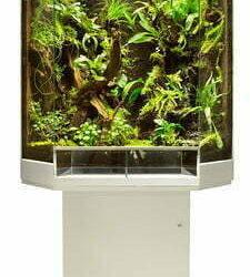 terrarium kopen online