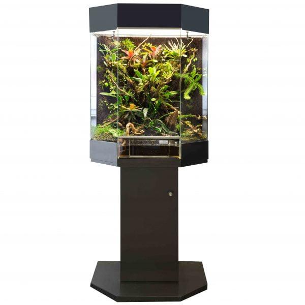 orchideenterrarium kopen
