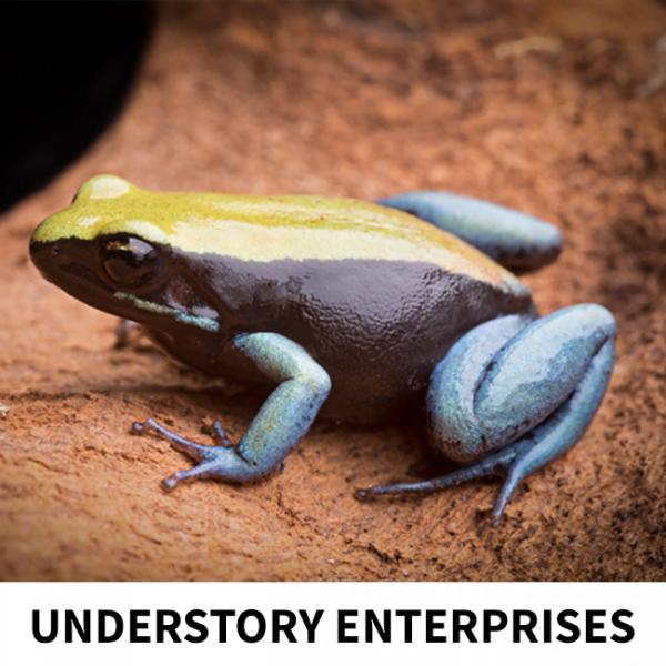 dutchrana-understory-enterprise-3