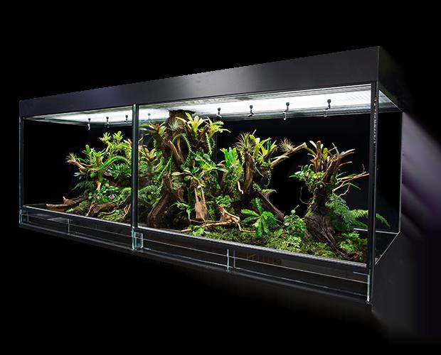 terrarium kopen